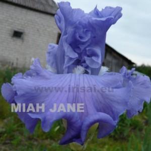 miah_jane
